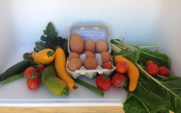 Produce in the Community Plot Box. Check out the size of one of the eggs, kindly contributed by 'Betty'.
